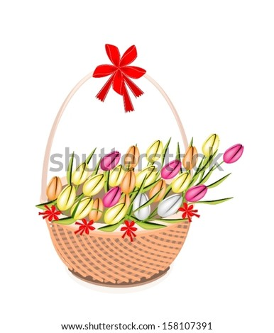 Symbol of Love and Luxury, An Illustration of Lovely Spring Colorful Tulips on A Beautiful Wicker Basket for Someone Special.