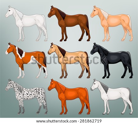 Table colors of horses vector - stock vector