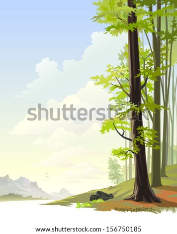 Tall trees in Amazon rain forest - stock vector