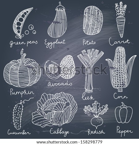 Tasty vegetables in vector set - green peas, eggplant, potato, carrot, pumpkin, avocado, leek, corn, cucumber, cabbage, radish, pepper. Tasty vegetarian concept collection - stock vector