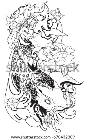 Koi Vector Stock Images Royalty Free Images Amp Vectors