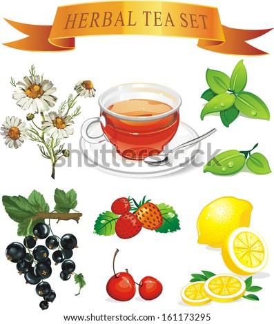 Tea set aromatic plants - stock vector