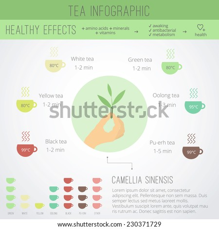 Tea time infographics. The health benefits, cooking, icons of cups in flat style in vector - stock vector