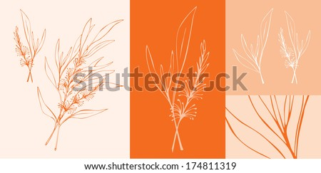 Tea tree - stock vector