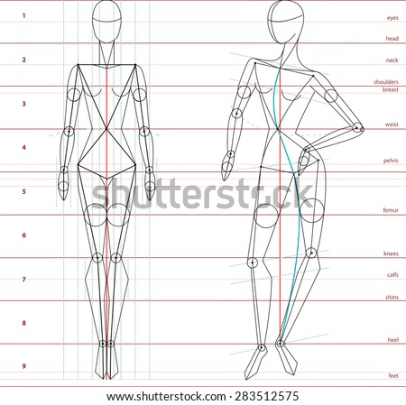 Female Human Body Stock Photos Images Amp Pictures