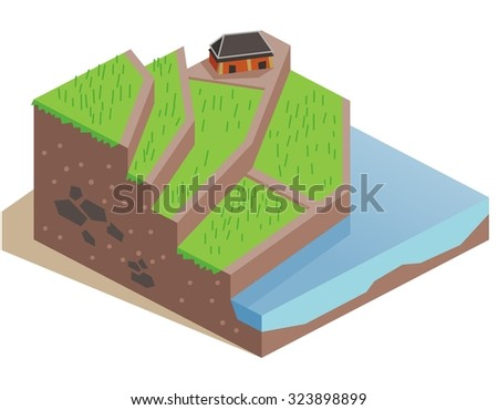 Terrace Farming land. Isometric vector illustration - stock vector