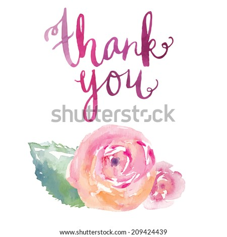 Thank You Calligraphy Vector With Watercolor Ranunculus Flowers. - stock vector