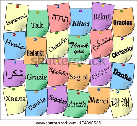 Thank you on different languages: afrikaans, azerbaianin, croatian, czech, danish, dutch, english, estonian, finnish, french, german, greek, hungarian, serbian, persian... on colorful notepad papers - stock vector