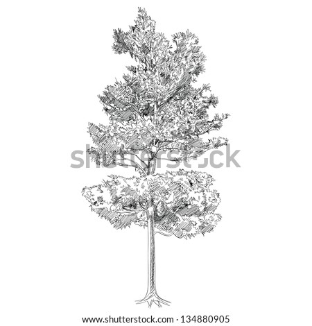 The Abstract of Tree - Hand Drawn - stock vector