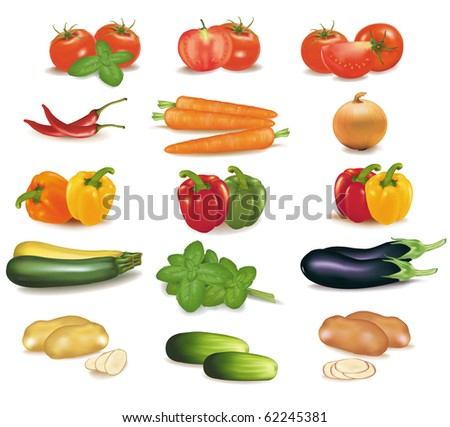 The big colorful group of vegetables. Photo-realistic vector. - stock vector