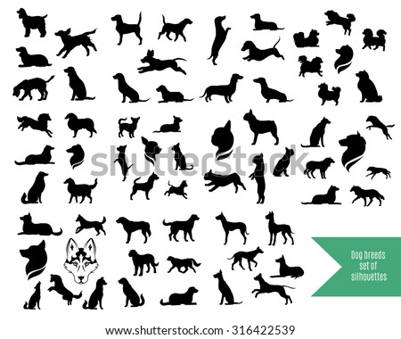 The big vector set of dog breeds silhouettes and icons.  - stock vector