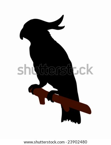 The black silhouette of a cockatoo on white - stock vector