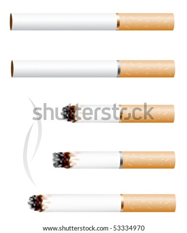 The cigarette and smoke stub isolated on white background - stock vector