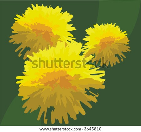 The figure representing three yellow dandelions on a green background. The image can be used as a background or a separate part of a composition - stock vector