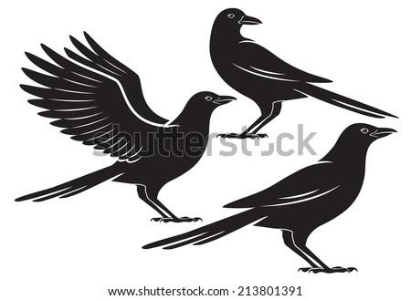 the figure shows a bird crow - stock vector