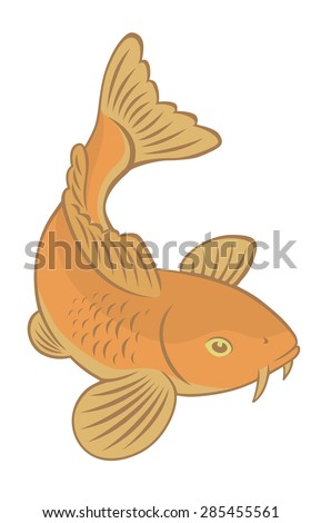 The figure shows a fish carp koi - stock vector