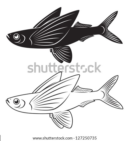 Flying fish stock images royalty free images vectors for Flying fish drawing
