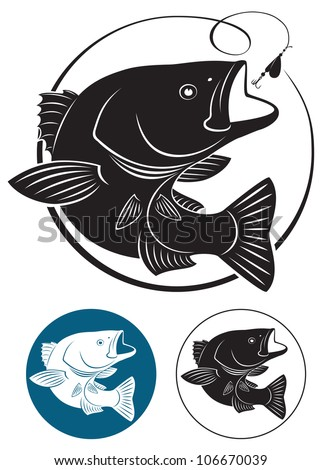 the figure shows Sriped Bass fish - stock vector