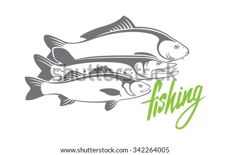The figure shows the carp, pike, perch - stock vector
