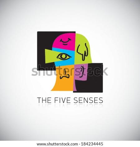 The five senses - stock vector