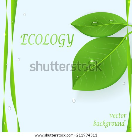 The green background with leaves - stock vector