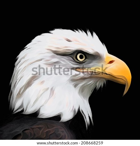 The head of a bald eagle, haliaeetus leucocephalus, isolated on black. Side face portrait of American eagle, US national character. Amazing vector image. Great for user pic, icon, label, tattoo.  - stock vector