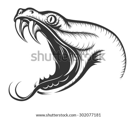 The head of Snake. Engraving style. Isolated on white. - stock vector