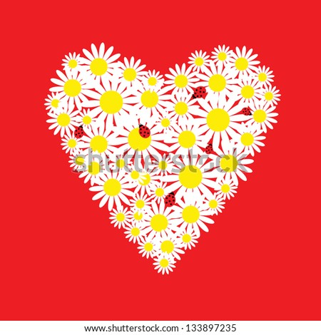 The heart of daisies with a ladybirds - stock vector