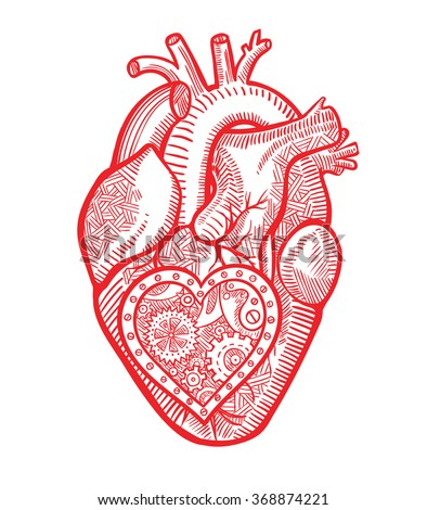 The human heart with a mechanical heart inside in the graphic style - stock vector