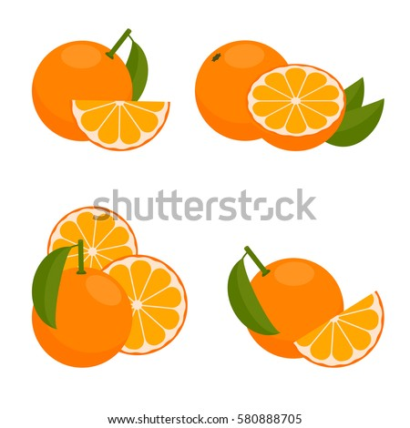 Orange Fruit Vector Orange Icon Stock Imag...