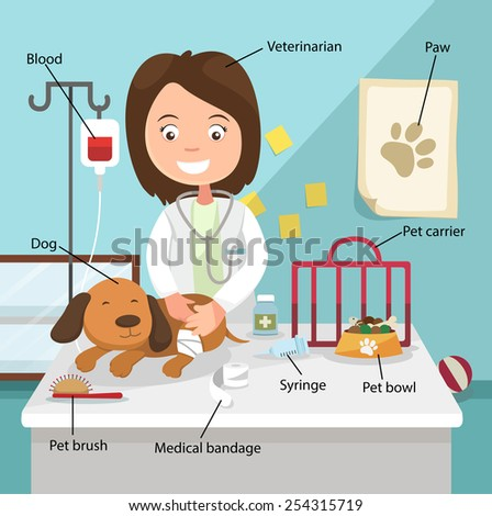 The Idea of Female Veterinarian Curing the Dog with Related Vocabulary Index illustration, vector - stock vector
