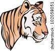 The illustration of nice little tiger cub. Vector EPS Illustration. - stock vector