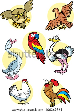 The illustration shows some types  birds. Done in a cartoon style, on separate layers. - stock vector