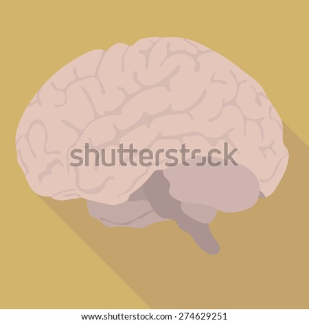 the image of the human brain. flat design - stock vector