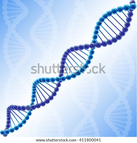 The molecule of deoxyribonucleic acid. Volume DNA chain in vector clipart.