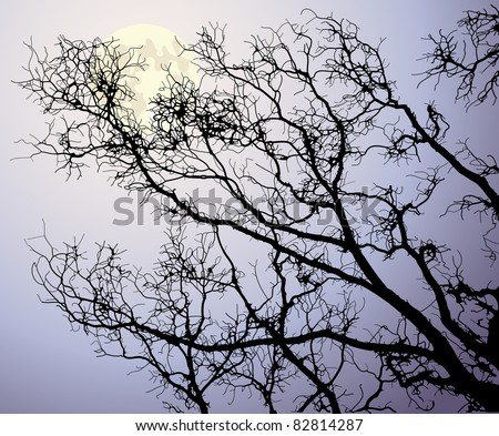The moon behind tree branches - stock vector
