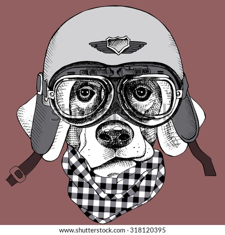 The poster with the portrait of a dog in the motorcycle helmet. Vector illustration. - stock vector