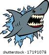 The Shark - stock vector