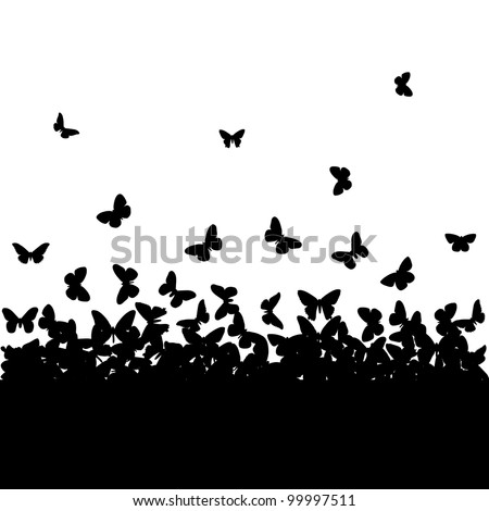 The silhouettes of butterflies.
