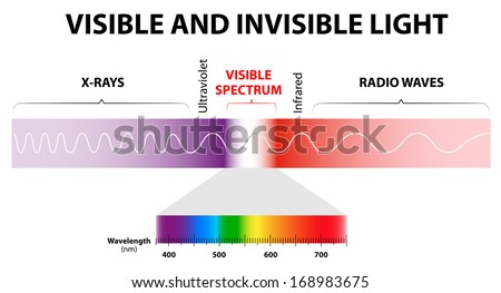 The spectrum of waves includes infrared rays,  visible light, ultraviolet rays, and X-rays. Human eyes are only sensitive to the range that is between wavelength 780 nm and 380 nanometers in length. - stock vector