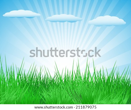 The summer sun meadow under blue sky with clouds - stock vector