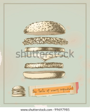 the taste of every ingredient - hamburger- drawing - stock vector