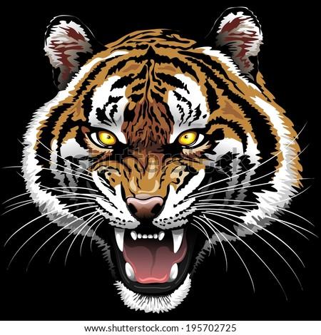 The Tiger Roar - stock vector