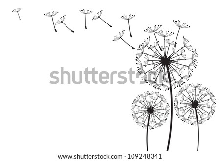 The vector dandelion on a wind loses the integrity - stock vector