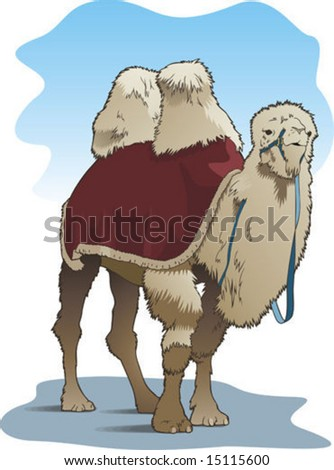 The vector image of a camel as transport. - stock vector