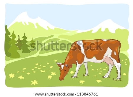 The white and red cow is grazed on the Alpine meadow. Vector illustration. - stock vector