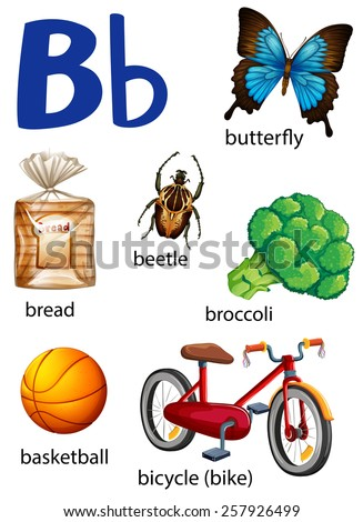 Things that start with the letter B on a white background - stock ...