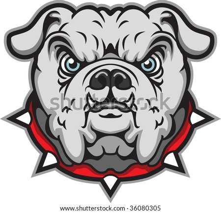 This is a bulldog. - stock vector