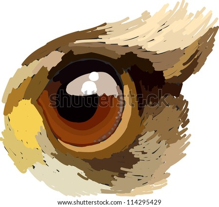 This is a vector file of eye bird.This file is sketch on my imagination - stock vector