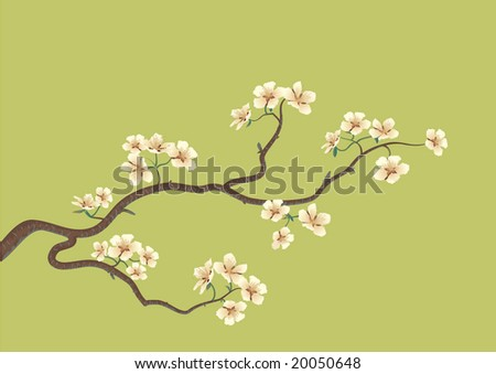 This is the vector illustration of a flowered sakura, japanese cherry tree - stock vector